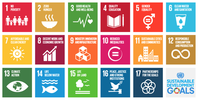 SDGs at the heart of business