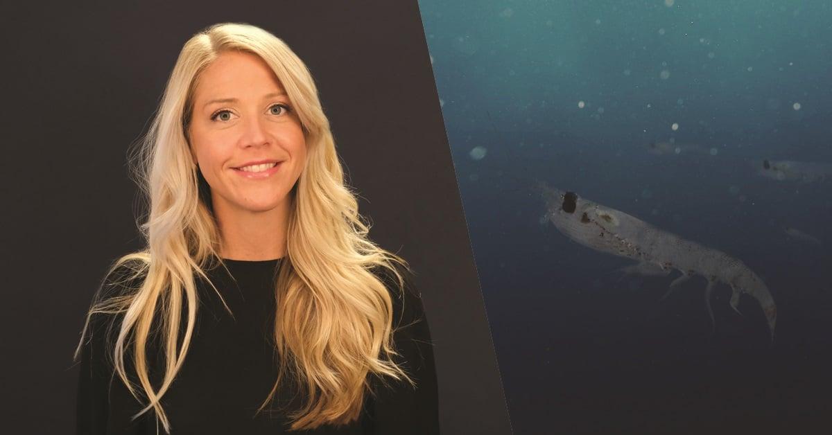 Marianne Nergård