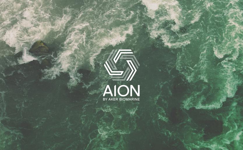 Aion-Hero - Ipad