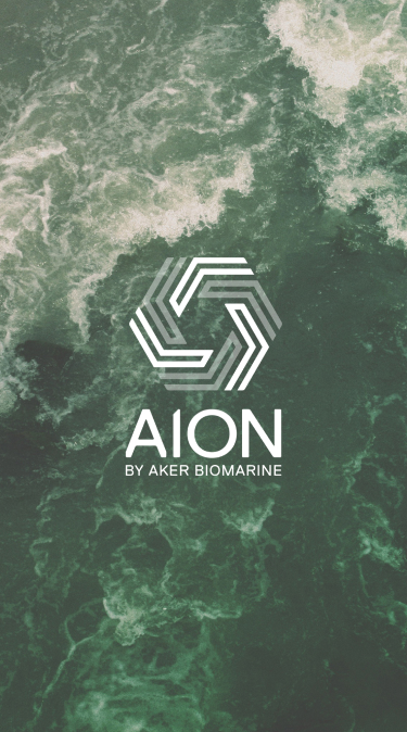 Aion-Hero - Mobile